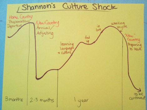 Shannon's Culture Shock