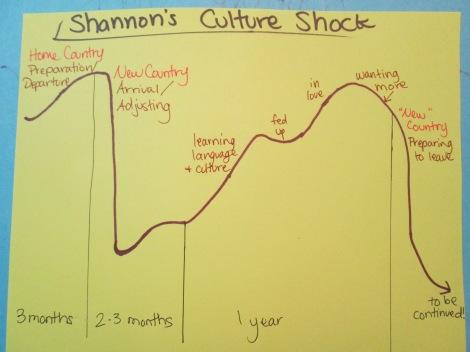 Shannon's Culture Shock